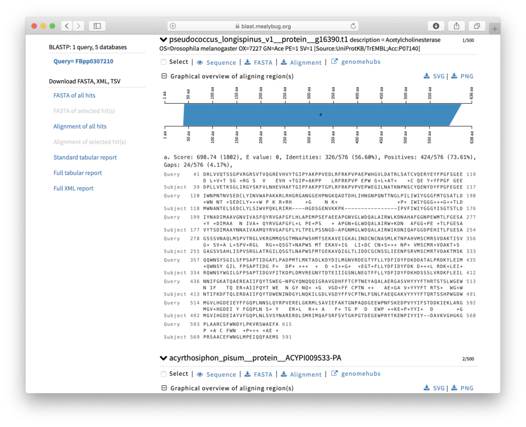 Search with a Sequence – GenomeHubs